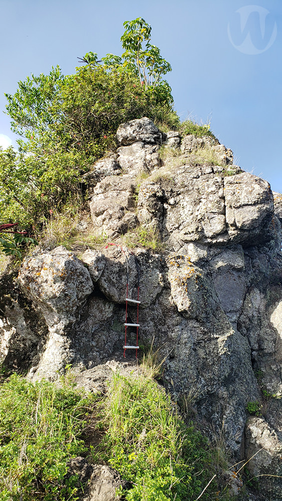 Ladder up the rock